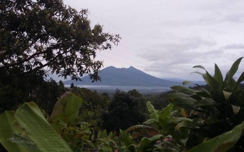 Selamat Datang di Cipendawa Farmers